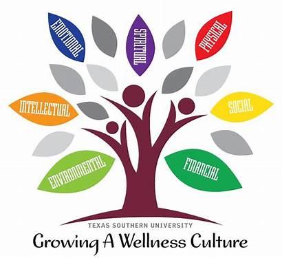Wellness Health Employee Texas Culture Benefits Hr