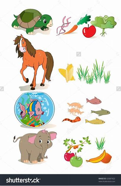 Animals Clipart Clip Eat They Clipartsgram Shutterstock
