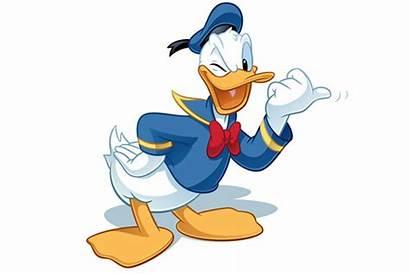 Cartoon Duck Character Donald Peeking