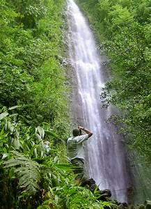 #9 - Jurassic P... Waterfall