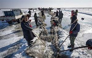 Ice fishing event held in NE China's Chagan Lake (4 ...