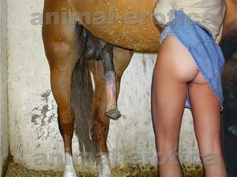 ZOO SEX. Pretty teen getting to fuck a huge horse cock