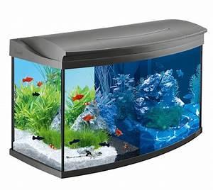 Großes Aquarium Kaufen : tetra aqua art 100 top angebote ratgeber testsieger ~ Frokenaadalensverden.com Haus und Dekorationen