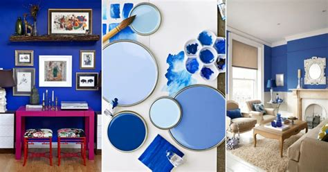 paint colors that go with blue my web value