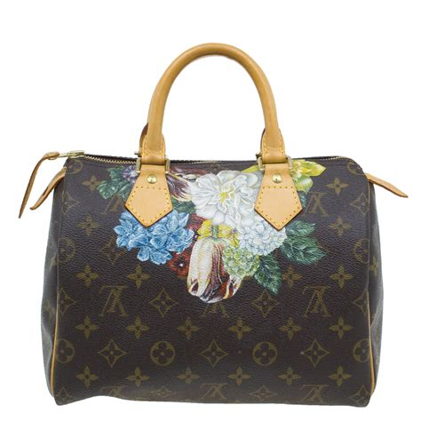 louis vuitton monogram canvas hand paint speedy  bag