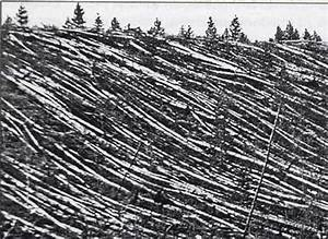 Tunguska Meteorite in Siberia – is the Mystery Unraveled ...