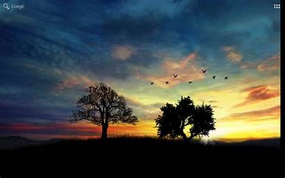 Pro Sunset Night Hill Google Apk Sky