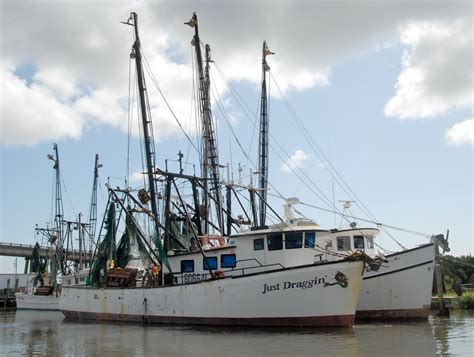 Shrimp Boat Pics by Shrimp Boats Moored Free Stock Photo Domain Pictures