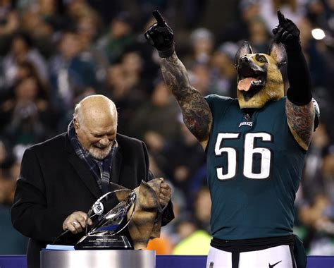 pictures eagles  vikings  nfc championship game
