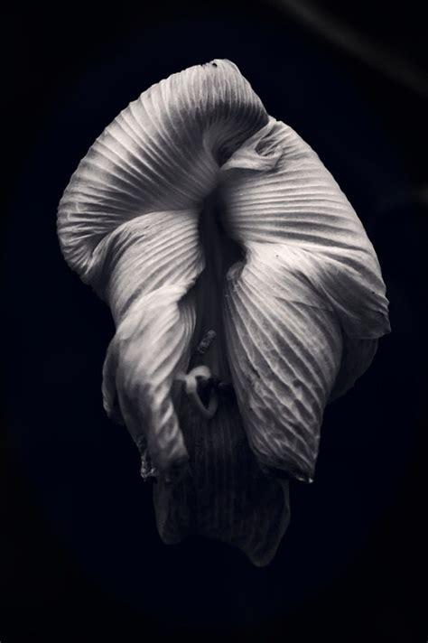 key photography highlighting darkness