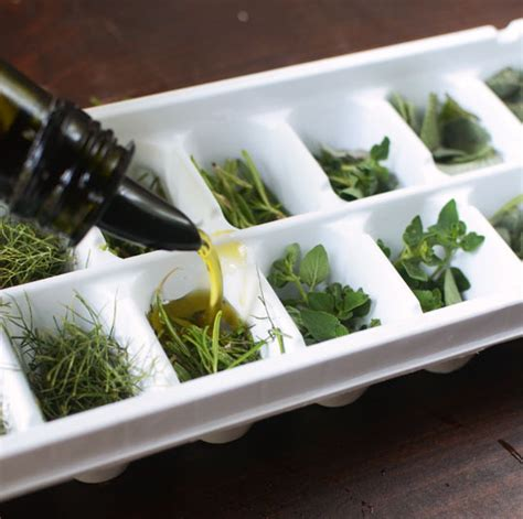 can you freeze basil how to freeze and preserve fresh herbs in olive oil