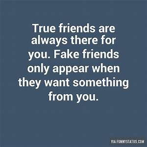 Fake Friend Meme | www.pixshark.com - Images Galleries ...