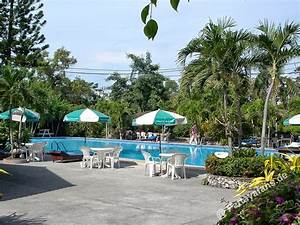 pattaya palm garden hotel With katzennetz balkon mit pattaya palm garden