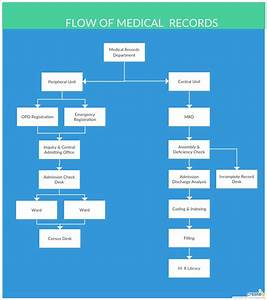 Flow Structure Of The Medical Departments  Medical