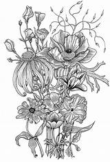 Notebook Coloring Behance Posters Flowers sketch template