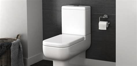 How To Install A Water Closet by Bathroom Inspiration Bathroom Ideas Plumbing