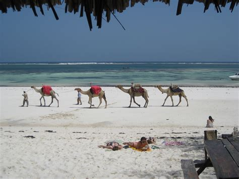 Budget Travel In Mombasa