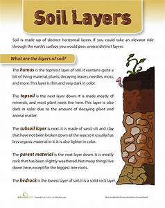 Soil Layers By Paul Benitez
