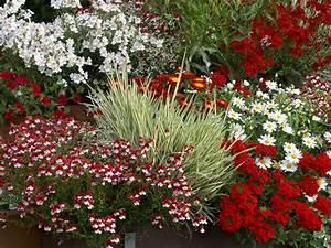 Blumen Für Den Balkon : ideen f r ihre balkon gestaltung in rot bronze ~ Lizthompson.info Haus und Dekorationen