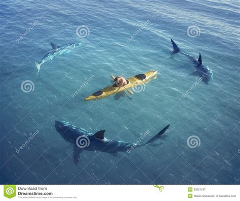 Sinking Boat Surrounded By Sharks by A In A Boat Kayak Was Trapped In The Middle Of The