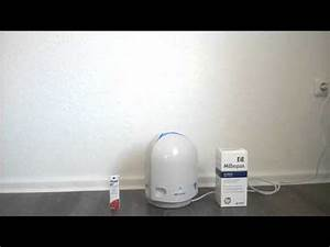 Milben Im Teppich : allergie milben schimmel teppich laminat atemnot gesundheit youtube ~ Markanthonyermac.com Haus und Dekorationen