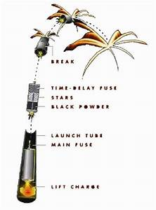 Display Firework Schematic  From