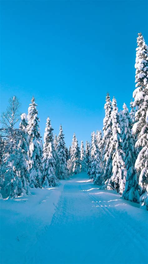 Winter Aesthetic Wallpaper Free Downloads