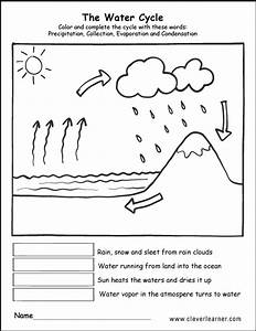 Image Result For Water Cycle First Grade Worksheet