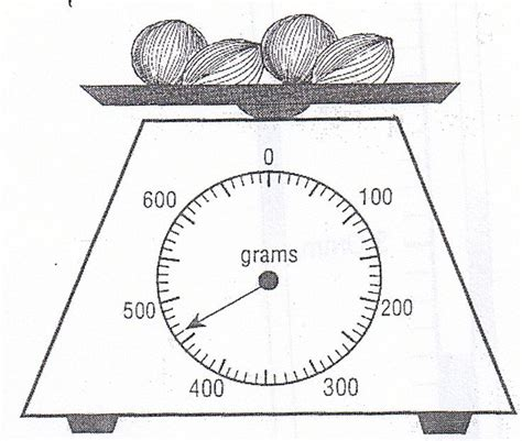 138 best primary school math mesurement capacity mass