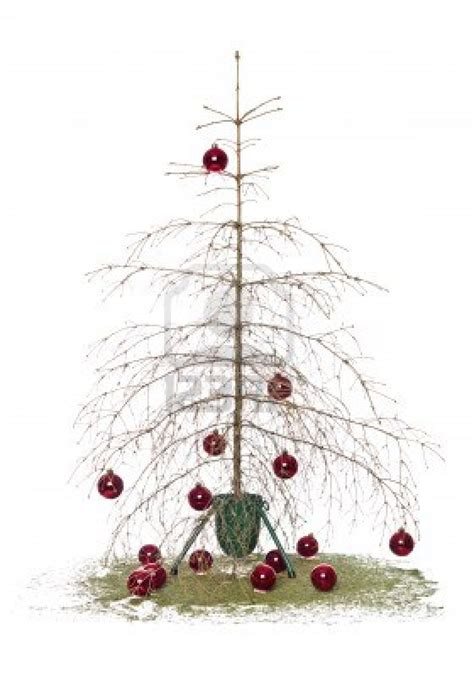 Nyc Christmas Tree Recycling 2016 by Splendid Ideas Christmas Tree Bin Exquisite Disposal