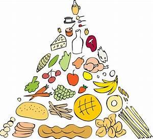 Food Pyramid Nutritional Guidline Stock Vector