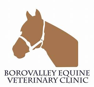 The gallery for --> Equine Veterinary Symbol