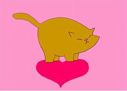 Animated Cat Kawaii Cats Gifs Animals Pixel
