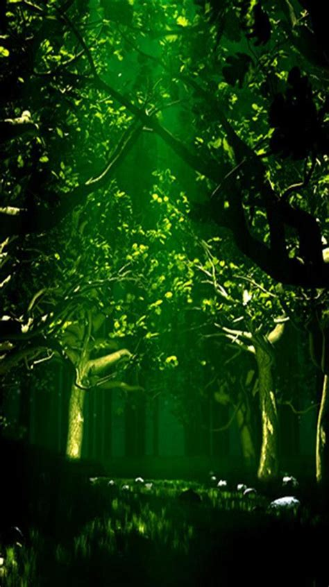 Explore forest green background on wallpapersafari   find more items about free forest wallpapers 1280x1024 green images green forest wallpaper hd wallpaper and background photos. 48+ Dark Forest iPhone Wallpaper on WallpaperSafari