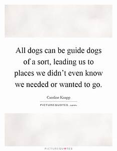All dogs can be guide dogs of a sort, leading us to places ...