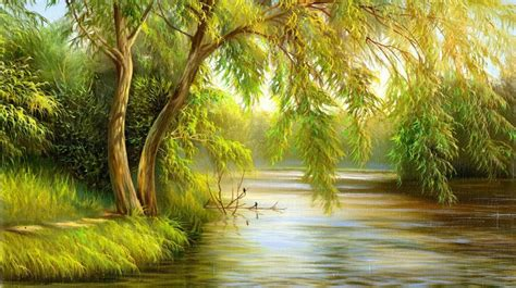 weeping willow stream large wall murals summer
