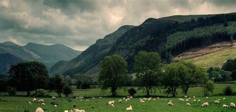 beautiful calming landscape photography  martin turner