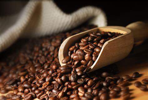 Le choix du café en grain : mélange ou pure origine ?   Frigoandco.com   Actualités culinaires