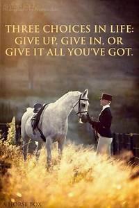 Give it all you've got. | Horses:) | Pinterest | Dressage ...