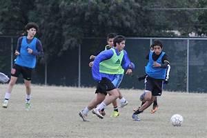Boys Soccer Preview   Brahma News