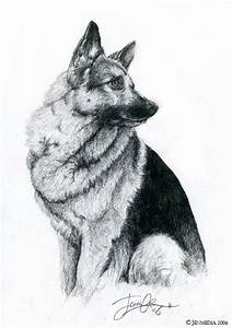 German Shepherd By Lillidan86 By Dogs On Deviantart