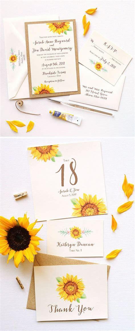 nggak  hamtaro  suka biji bunga matahari konsep