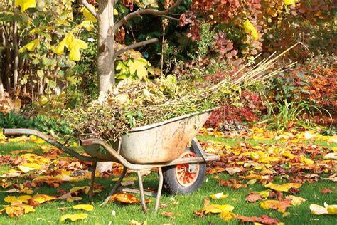 Gartenpflege Herbst by Schneiden Herbst Smartstore
