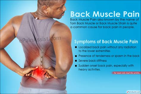 Lower back muscle and hip pain may also be caused by stenosis in the spine. Back Muscle Pain: Treatment, Causes, Symptoms
