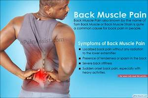 Lower Back Muscle Strain | www.pixshark.com - Images ...