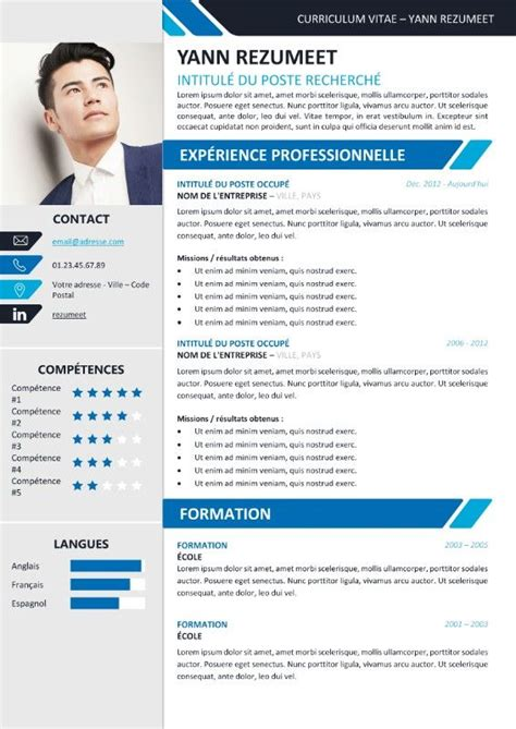 Cv Exemple Professionnel by Template Cv Professionnel Cv Travail Lusocarrelage