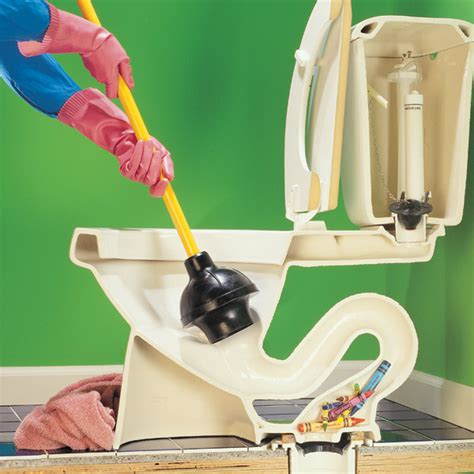 Dr House Cleaning Clogged Toilet Fixing With Green Products