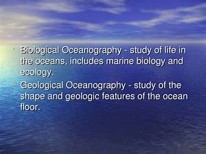 Physical Oceanography Chapter 20 1  Branches Of