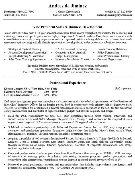 vice president sales business development resume
