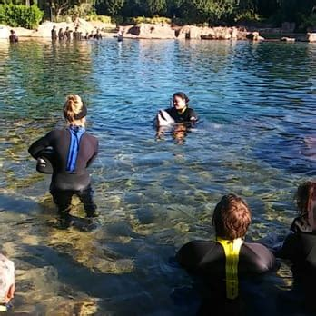 Discovery Cove Orlando Tickets by Discovery Cove 217 Photos 188 Reviews Theme Park